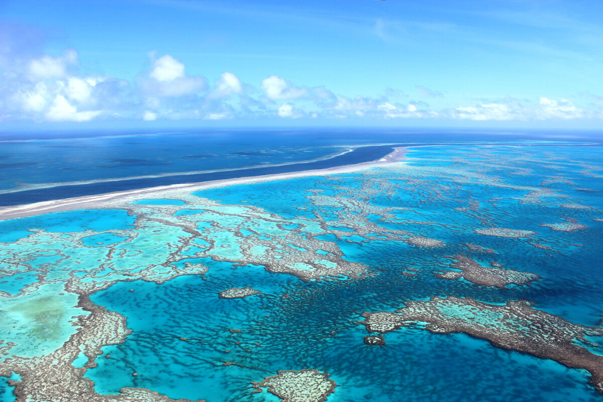 GSL Aviation Reef & Island scenic flight