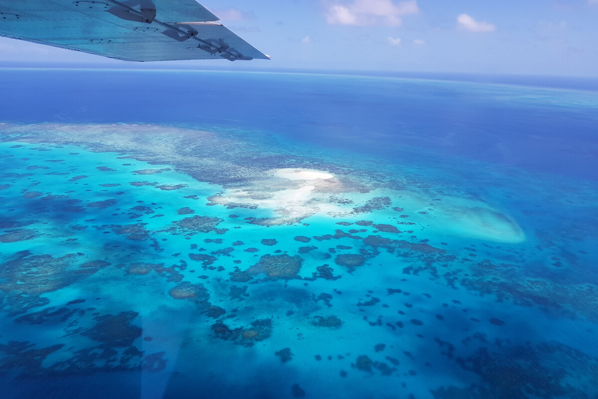 GSL Aviation Reef & Rainforest Package Tour